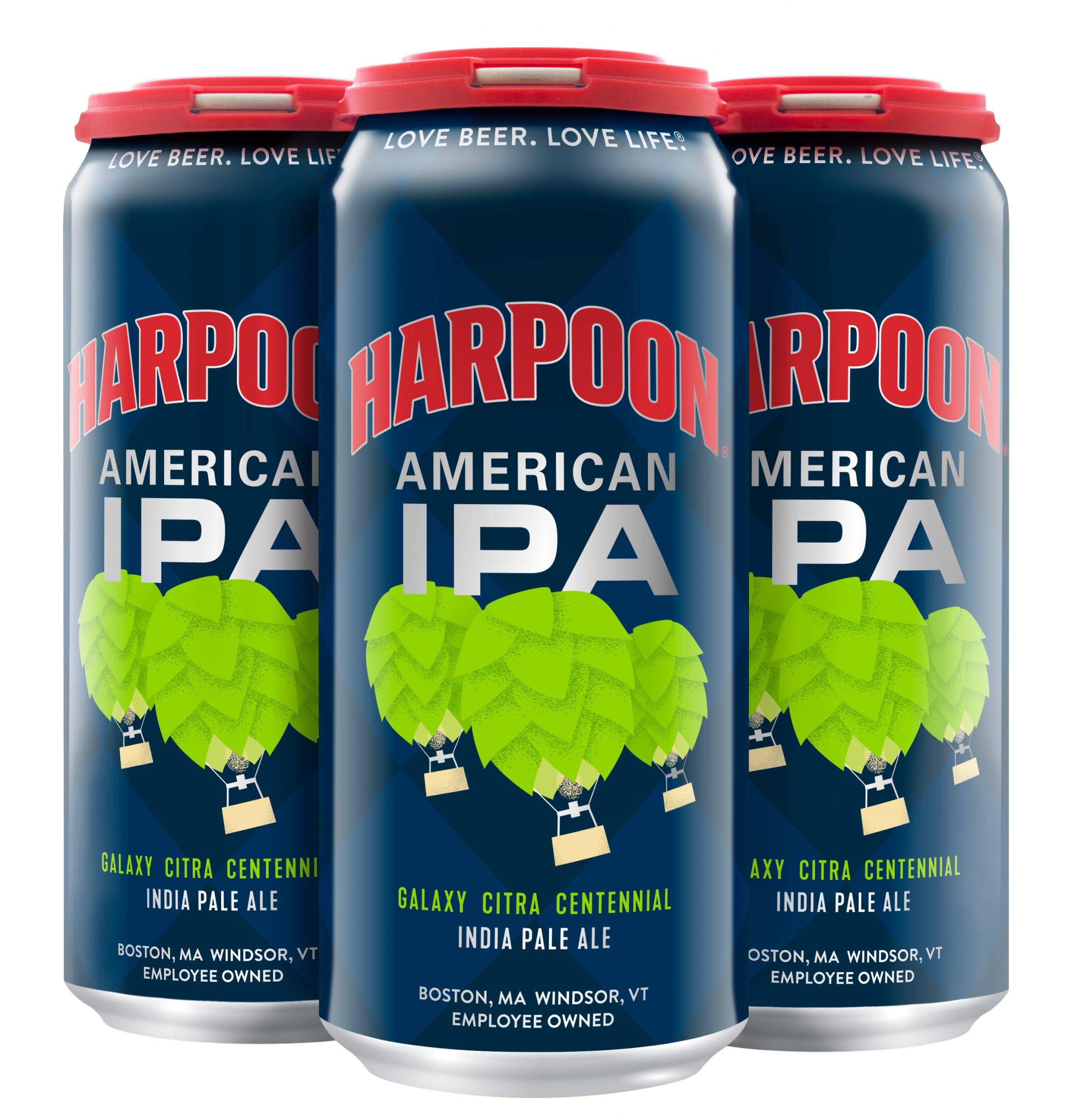 16 oz American IPA 4-pack can